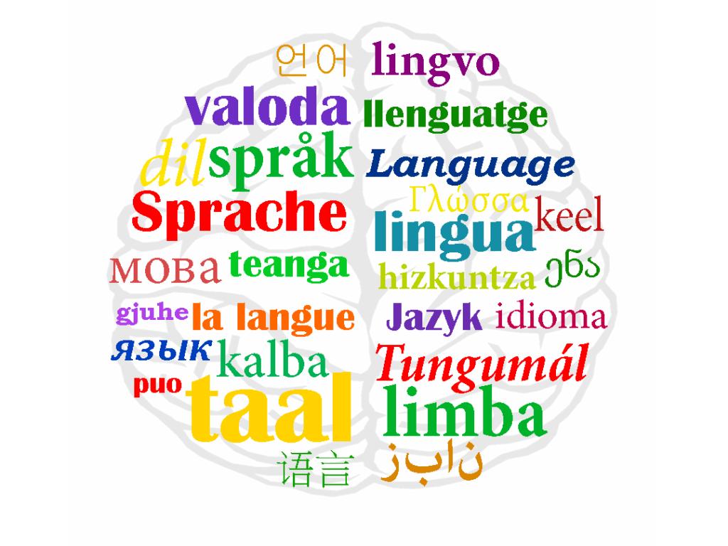 иностранные языки по скайпу развивают мозг